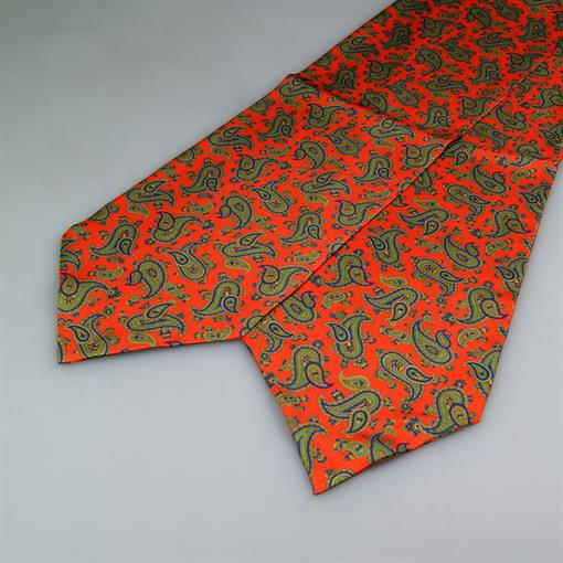 Shoes & Shirts Ascot-tie paisley