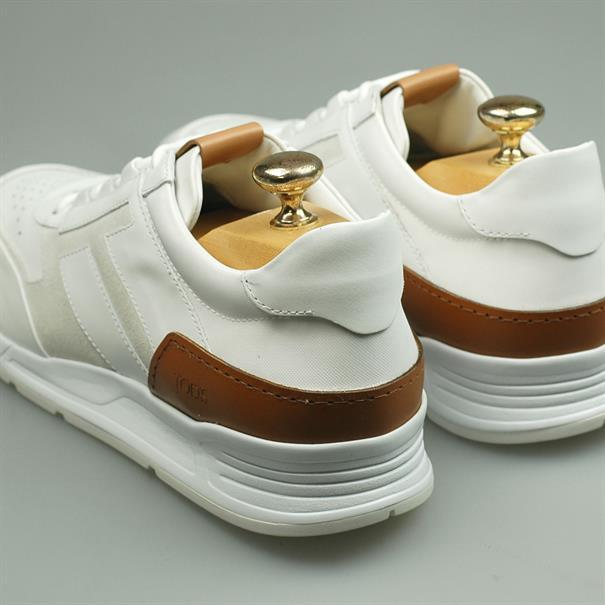 Tod's Sneaker luxury